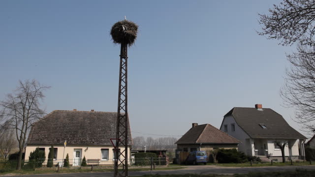 WS Village with two storks in nest on pole, Berlin, Germany