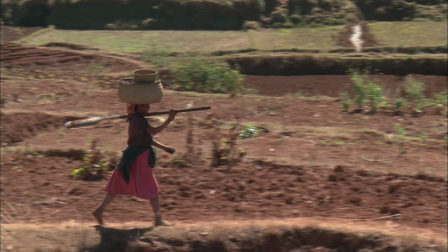 vídeos y material grabado en eventos de stock de zo a villager walking through farmland with baskets on her head / madagascar - madagascar