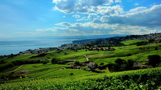 Village,vineyards and lake Geneva in Lausanne