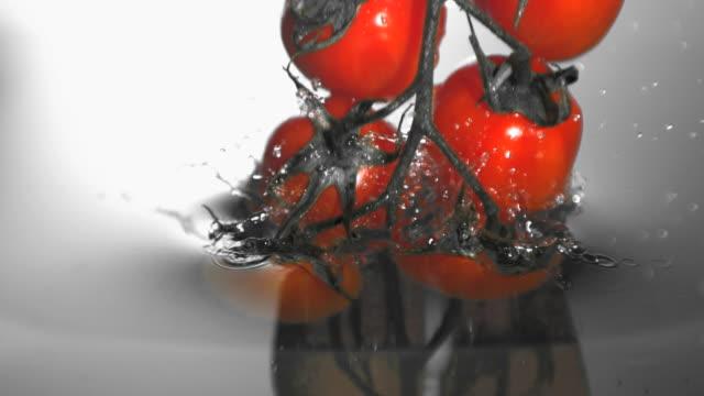 vídeos de stock e filmes b-roll de vine tomatoes falling in water - cor isolada