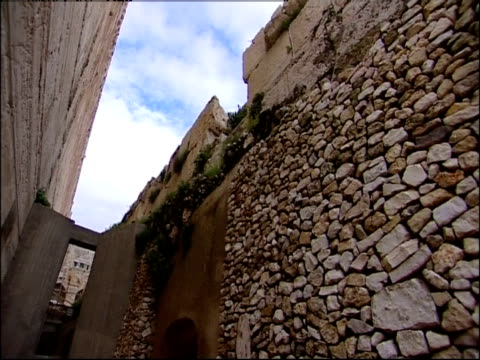 vines grow on a wall at the ruins of the temple mount. - gerusalemme est video stock e b–roll