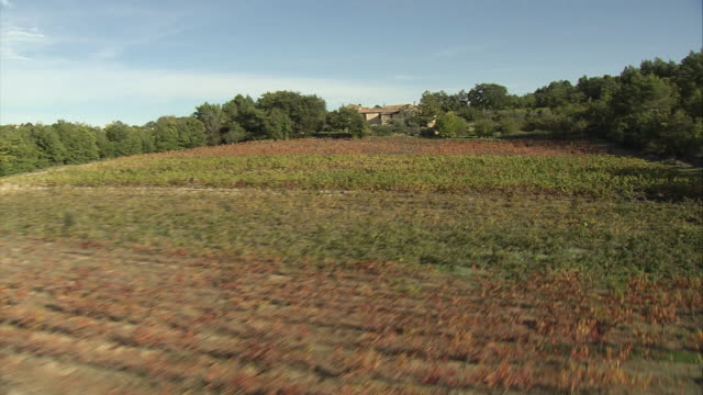 aerial vineyard and farmhouse on hill / lacoste, provence, france - luberon video stock e b–roll