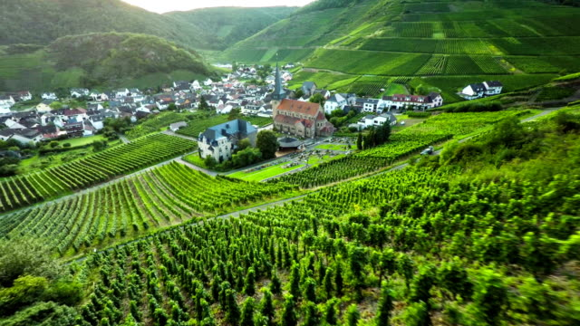 vineyard and idyllic village - vineyard stock videos and b-roll footage
