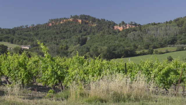 vineyard and ocre canyon of roussillon - luberon stock-videos und b-roll-filmmaterial