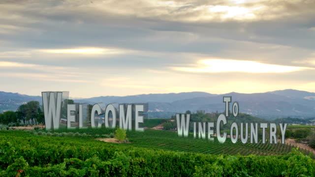 Vineyard Composition #2