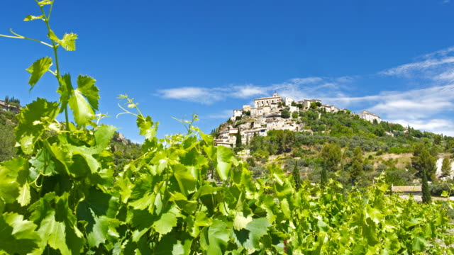 vineyard in front of a town on a hill - provence alpes cote d'azur stock videos & royalty-free footage