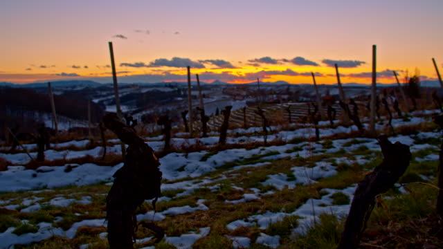 vídeos de stock, filmes e b-roll de ws ds vineyard no inverno ao anoitecer - geada