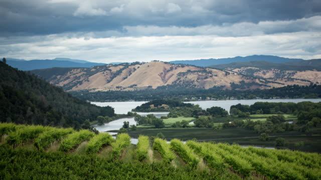 Vineyard, Lake county, Kalifornien