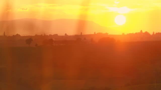 stockvideo's en b-roll-footage met hd dolly: vineyard region at sunset - kleurtoon