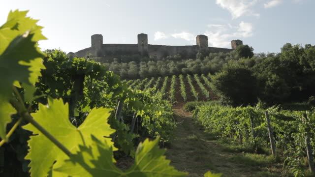 ws ld vineyard / tuscany, italy - toskana stock-videos und b-roll-filmmaterial