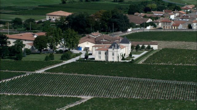 Vineyards  - Aerial View - Aquitaine, Gironde, France