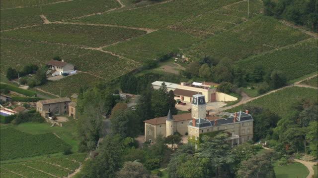 Vineyards And Chateau De Bellevue