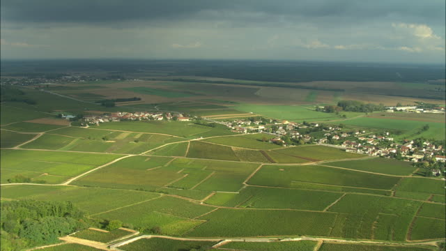 AERIAL WS Vineyards and surrounding landscape / Cote-d'Or, France