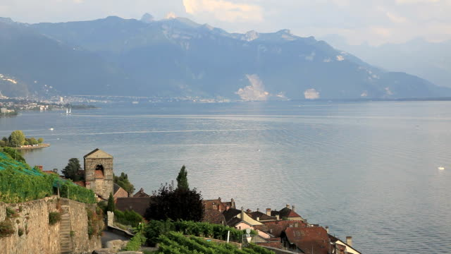 vineyards around lake leman, montreux, switzerland - montreux stock videos and b-roll footage