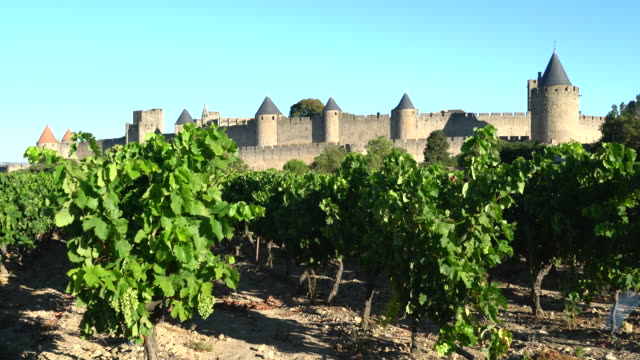 vineyards around the fortified city of carcassonne - carcassonne stock videos & royalty-free footage