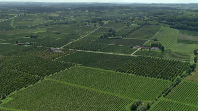 aerial, vineyards at bergerac, aquitaine, france - bergerac stock videos and b-roll footage