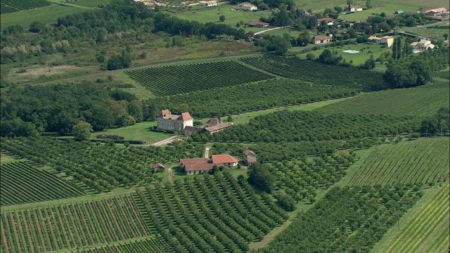AERIAL, Vineyards at Bergerac, Aquitaine, France