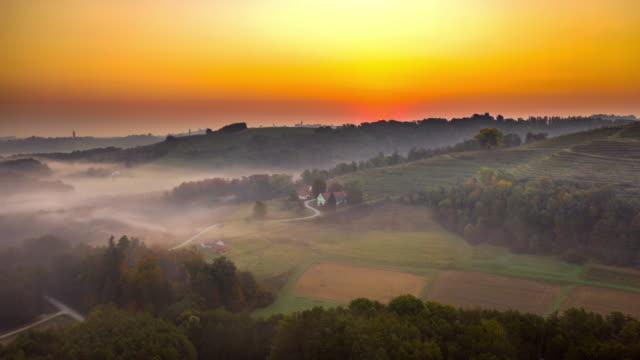 vídeos de stock, filmes e b-roll de h/l vinhas ao nascer do sol - aldeia