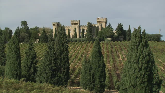 aerial vineyards, driveway flanked by tall cedar trees and castle on hill with barns and sheds / avignon, vaucluse department, france - hill点の映像素材/bロール