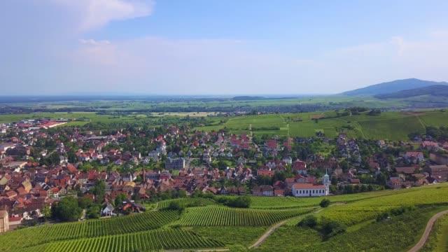 vineyards in alsace aerial drone video - weinberg stock-videos und b-roll-filmmaterial