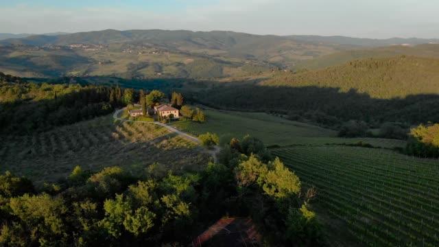 vídeos de stock e filmes b-roll de vineyards in chianti hills from drone - cultura mediterrânica