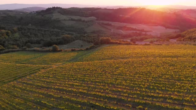 vineyards in chianti hills from drone - tuscany stock videos & royalty-free footage