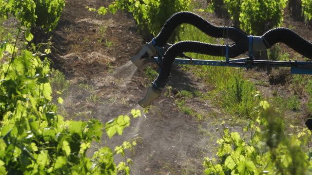 stockvideo's en b-roll-footage met vineyards in claret, herault, pic saint loup,france - wijngaard