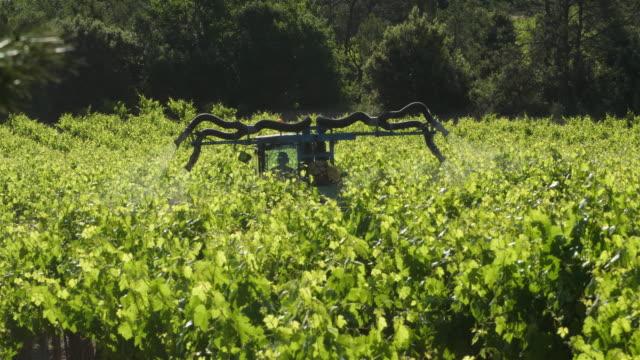 vidéos et rushes de vineyards in claret, herault, pic saint loup,france - tracteur