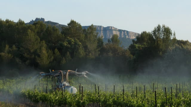 stockvideo's en b-roll-footage met vineyards in claret, herault, pic saint loup,france - frankrijk