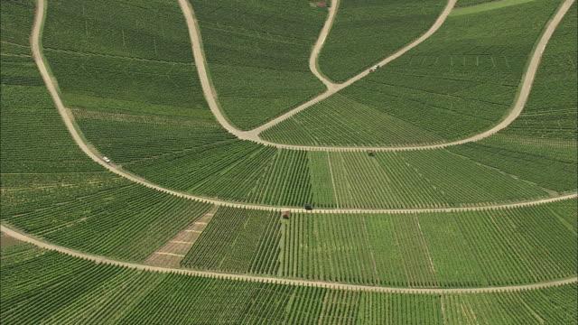 vídeos y material grabado en eventos de stock de aerial vineyards in hilly landscape, stuttgart, baden wurtenberg, germany - paisaje mosaico
