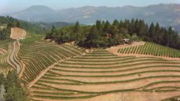 AERIAL Vineyards in Napa Valley, CA