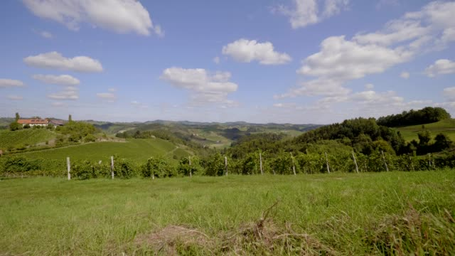 vineyards in southern styria, austria - traditionally austrian stock videos & royalty-free footage