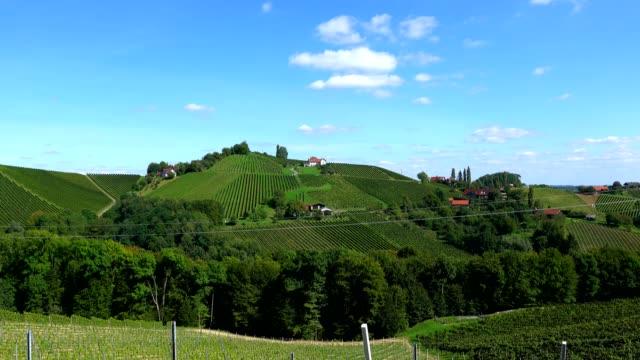 vingårdar i södra steiermark, österrike - österrikisk kultur bildbanksvideor och videomaterial från bakom kulisserna
