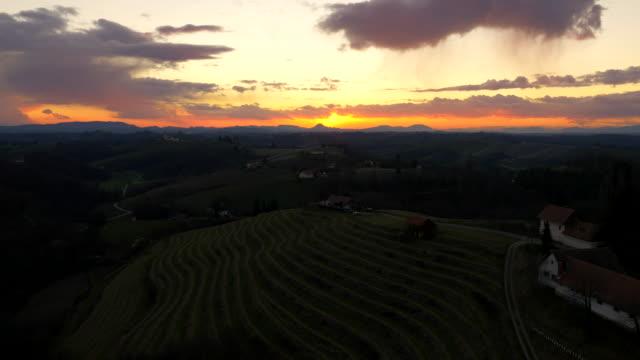 aerial vineyards in the sunset - prekmurje stock videos & royalty-free footage