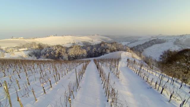 hd heli: weinberge im winter - eingefroren stock-videos und b-roll-filmmaterial