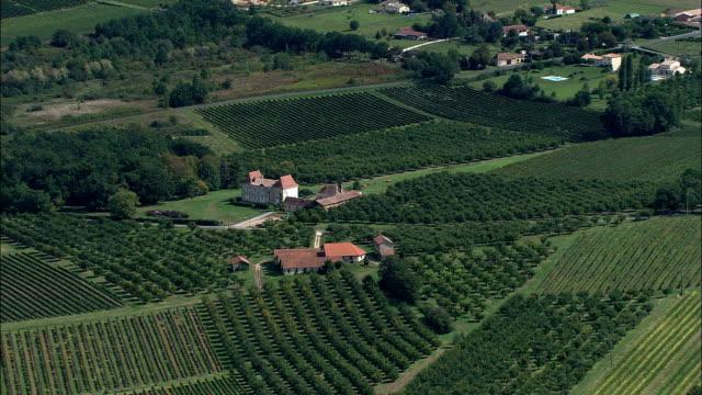 vineyards near bergerac  - aerial view - aquitaine, dordogne, arrondissement de bergerac, france - aquitaine stock videos and b-roll footage