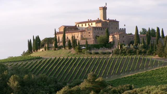 vidéos et rushes de ws vineyards of tuscan castle / montalcino, tuscany, italy - toscane