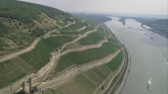 aerial vineyards on hillside by river rhine, rhineland-palatinate, germany - coastal road stock videos & royalty-free footage