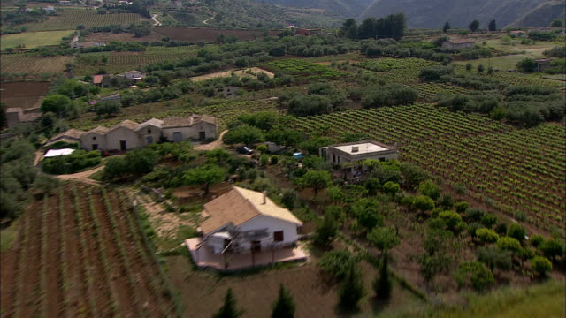 vineyards surround houses in sicily, italy. - cottage stock videos & royalty-free footage