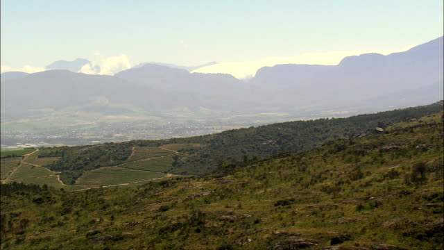 vineyards to the west of paarl  - aerial view - western cape,  cape winelands district municipality,  drakenstein,  south africa - paarl stock videos & royalty-free footage