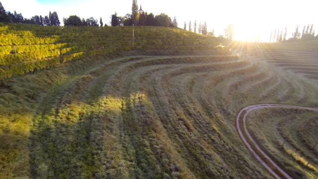 vídeos y material grabado en eventos de stock de hd: viñedos con una iglesia en la colina - perspectiva desde un helicóptero