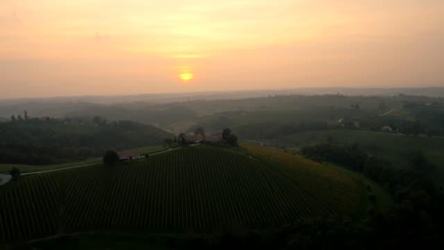 Vue aérienne Viniferous région au coucher du soleil