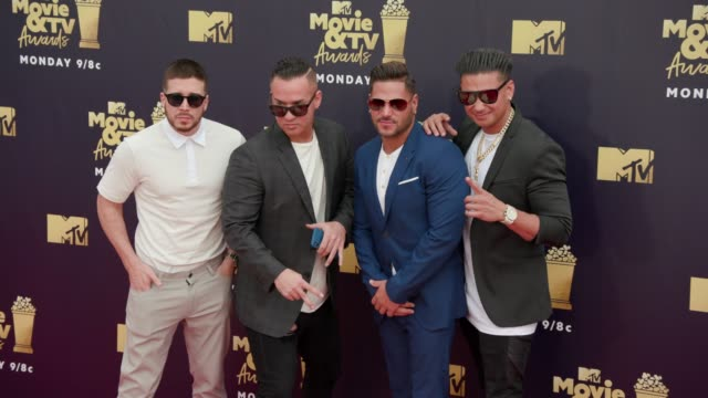 Vinny Guadagnino Mike Sorrentino Ronnie OrtizMagroat and Paul DelVecchio at 2018 MTV Movie TV Awards Arrivals at Barker Hangar on June 16 2018 in...