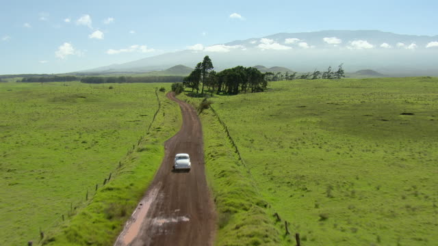 big island, hawaii - november 8, 2010: a vintage 1937 buick special business coupe, model 46, drives through the south kohala area. - ドライブ旅行点の映像素材/bロール