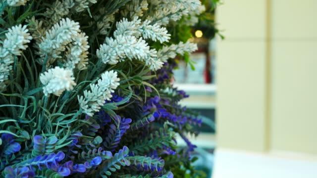 ヴィンテージの花の部屋 - ワスレナグサ点の映像素材/bロール