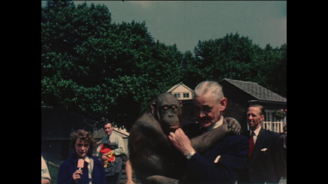 vintage home movie footage of a man holding a chimpanzee in a zoo, in the united kingdom circa 1964 - zoo stock videos & royalty-free footage