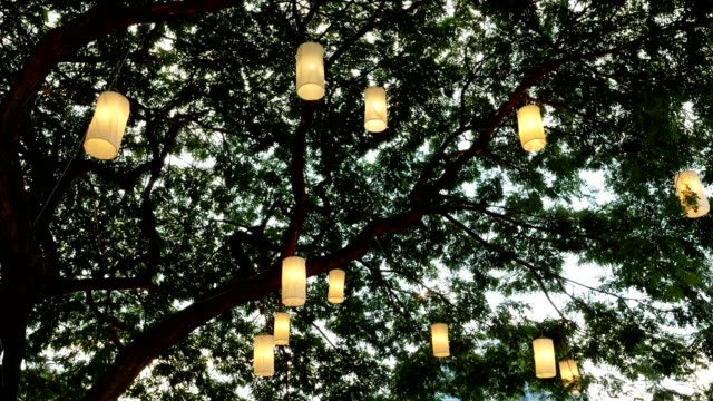 vintage lamps on big tree background