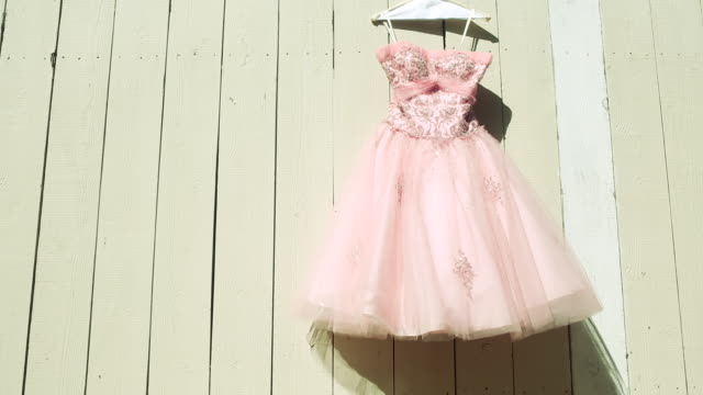 Vintage Peach Cocktail Dress Hanging on Wooden Fence