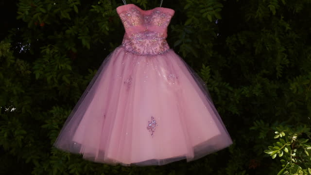 Vintage Pink Cocktail Dress Hanging on Tree