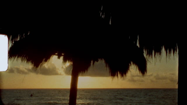 vintage super 8 film sunrise on the beach - tropical tree stock videos & royalty-free footage
